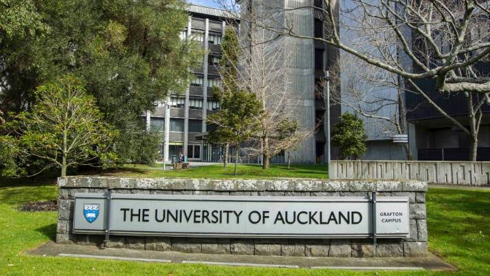 International Snickel Lane Urban Art Award at University of Auckland in New Zealand 2020