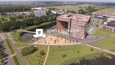Photo of Africa Scholarship Programme at University of Wageningen in Netherlands 2021